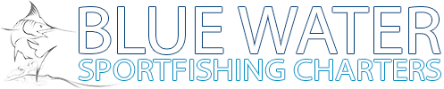 Blue water sport fishing trips