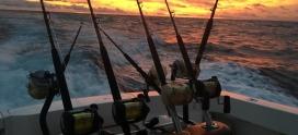 Overnight Fishing